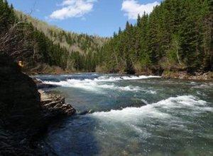 Bonaventure River
