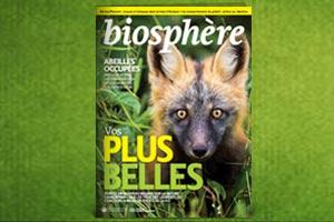 current issue bio magazine 300