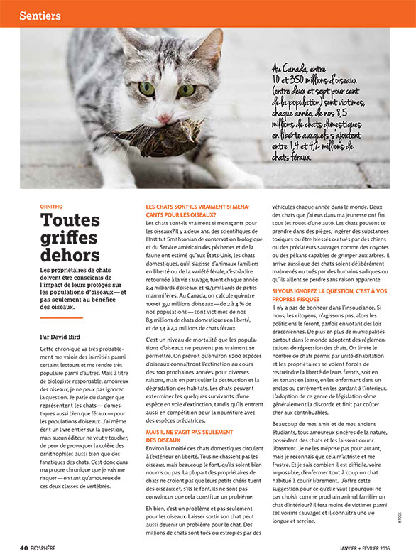 Article image with photo of a cat with prey in his mouth