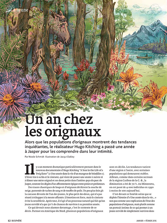 Article image with illustration of moose in the forest