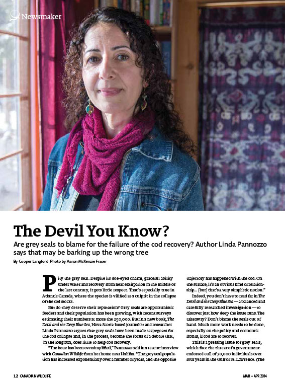 Article image with photo of Linda Pannozzo