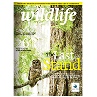 March April 2014 Canadian Wildlife Magazine Cover