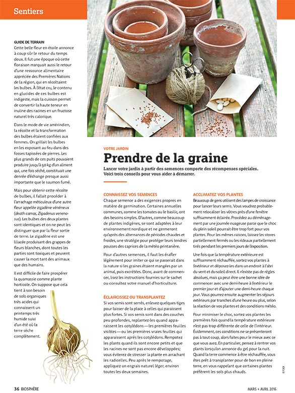 Article image with photo of clay planting pots