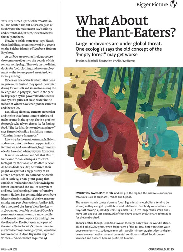 Article image with illustration of a wooly mamoth
