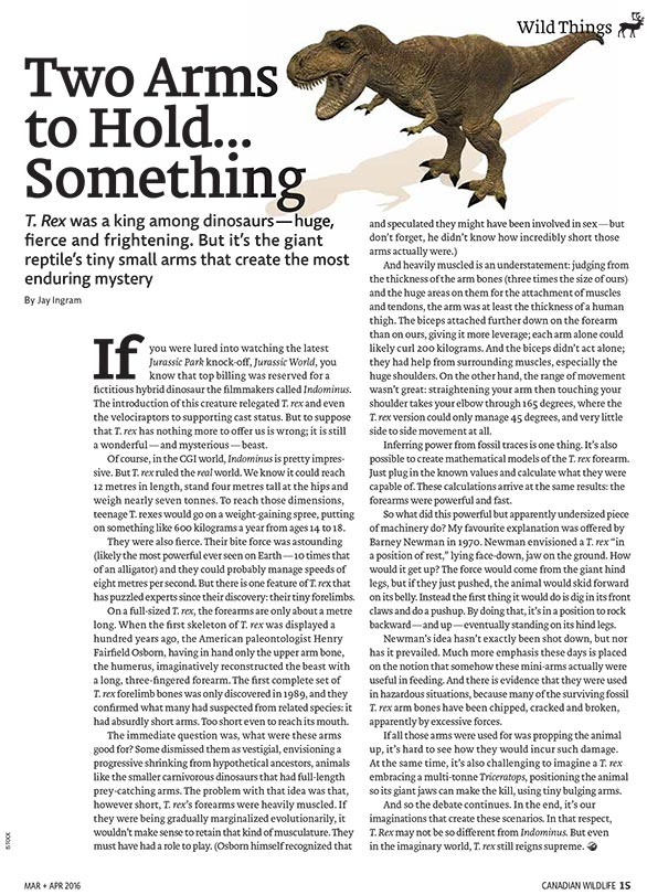 Article cover with illustration of dinosaur