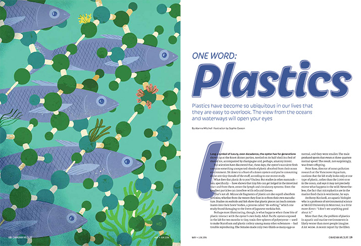 Canadian Wildlife Magazine Article Feature One Word Plastics