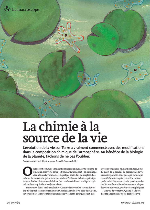 Article image with illustration of lilypads and bacteria