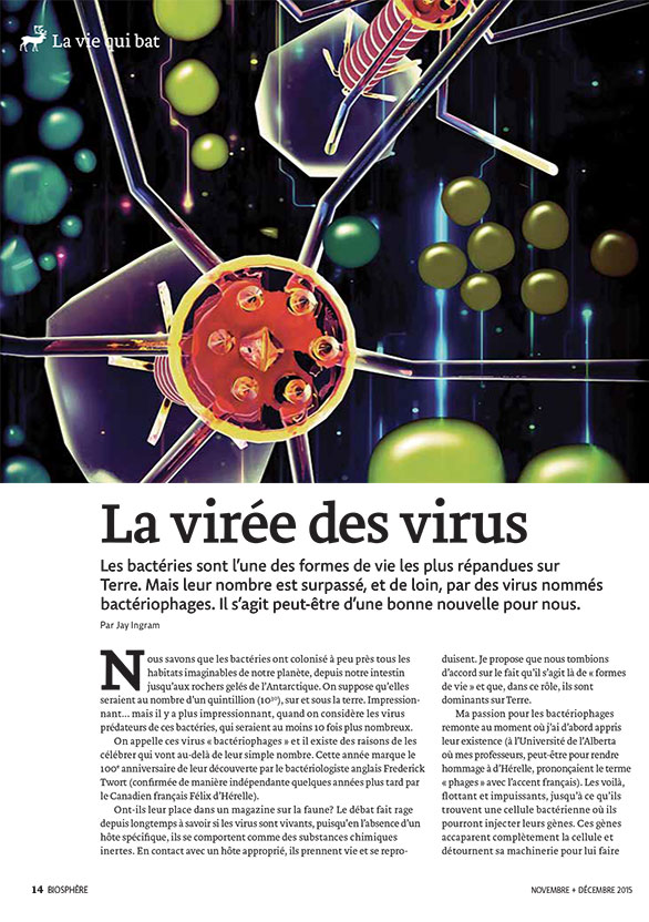 Article image with illustration of bacteria