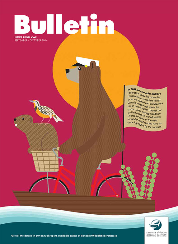CWF bulletin with illustration of bears cycling