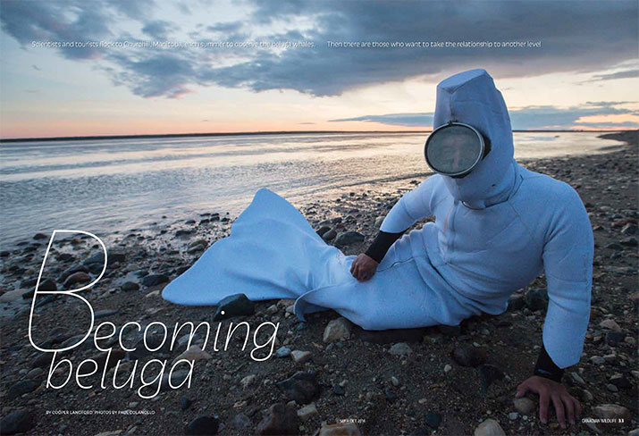 Canadian Wildlife Sept Oct 2014 Feature Beluga