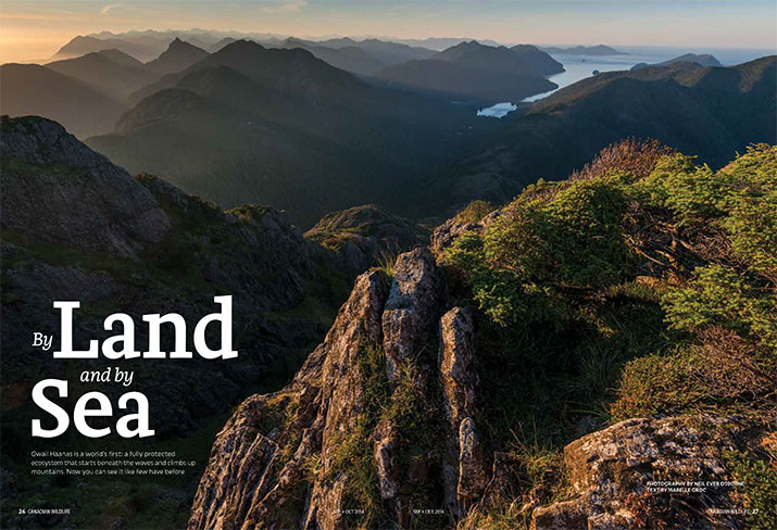 Canadian Wildlife Sept Oct 2014 Feature Land and Sea