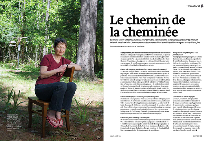 Article image with lady sitting on a chair in woods