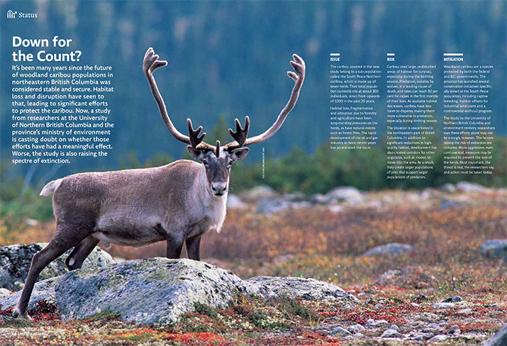 Status report on Caribou