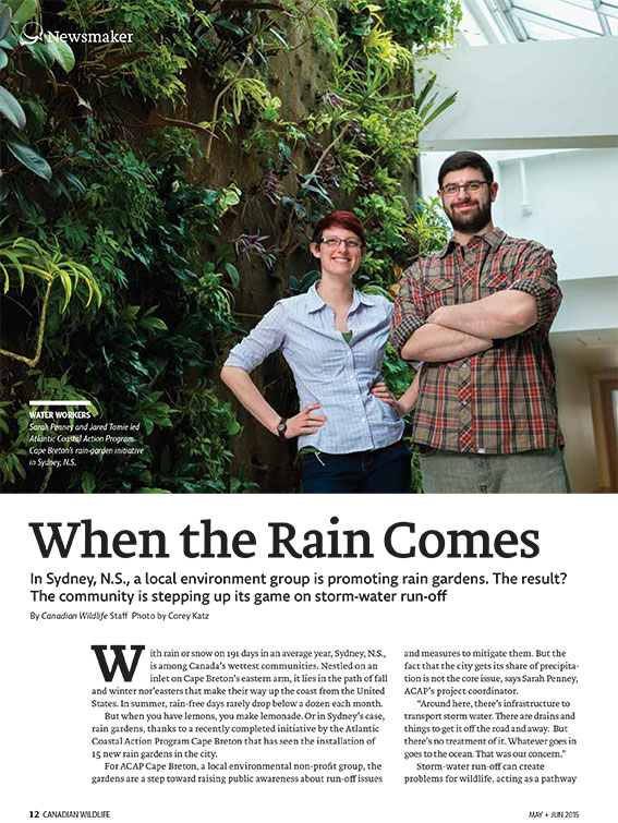 Article image with a photo of a couple by a tree