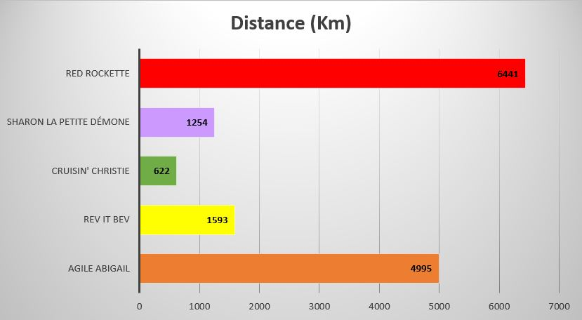 Distance in KM that the individual turtles travelled
