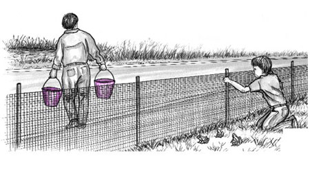 Illustration of child mending a fence and adult carrying buckets