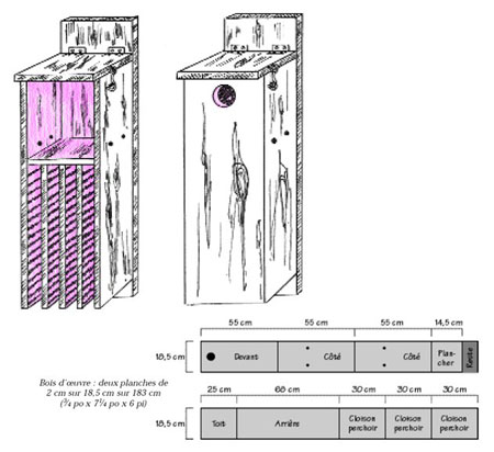 Combination bat and bird box diagram