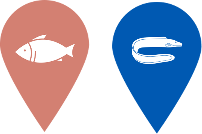 chinook and eel icon