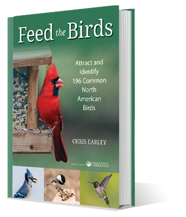 feed the birds book