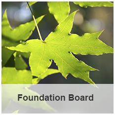 Foundation Board