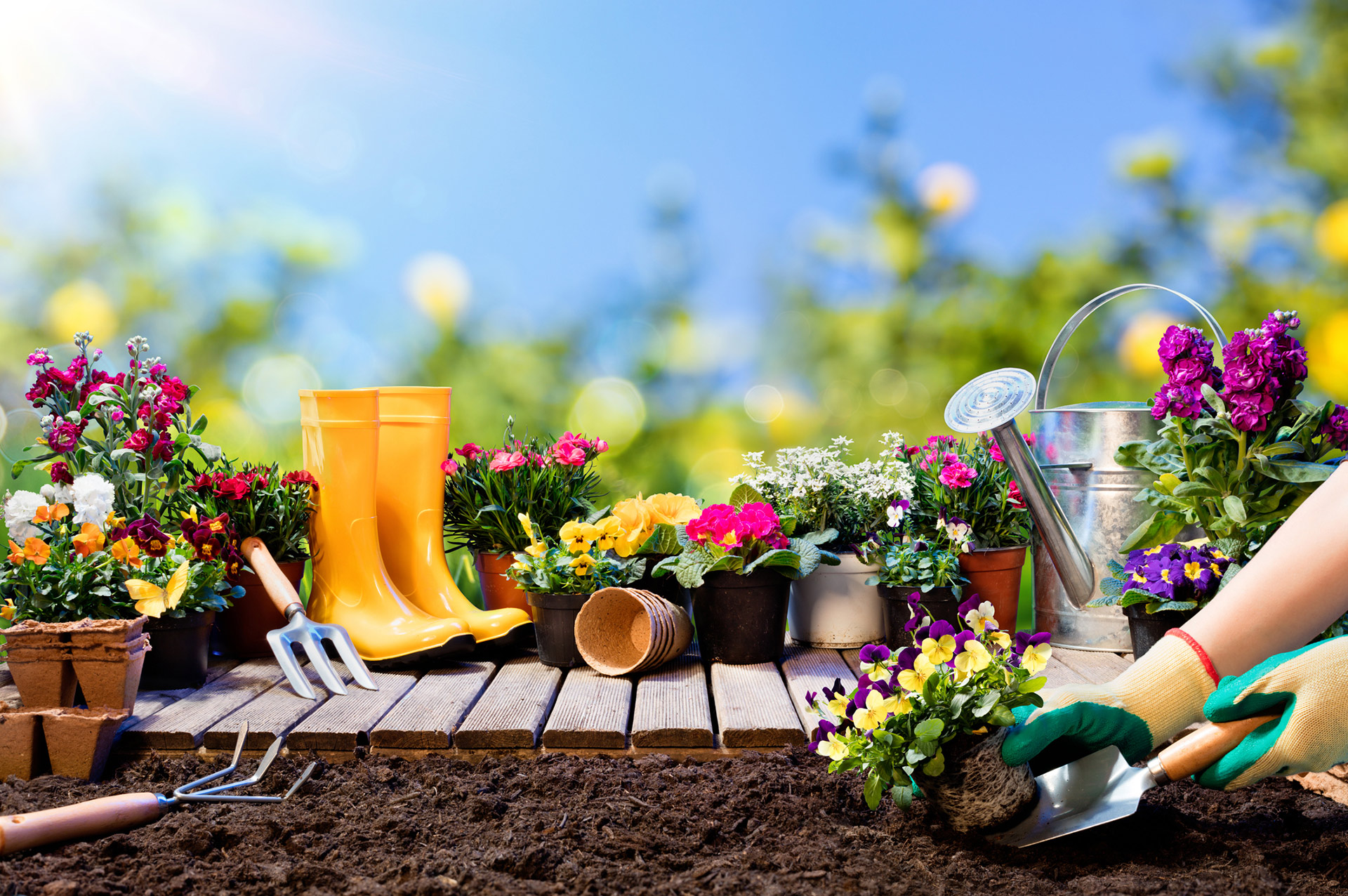 gardening tools flowers