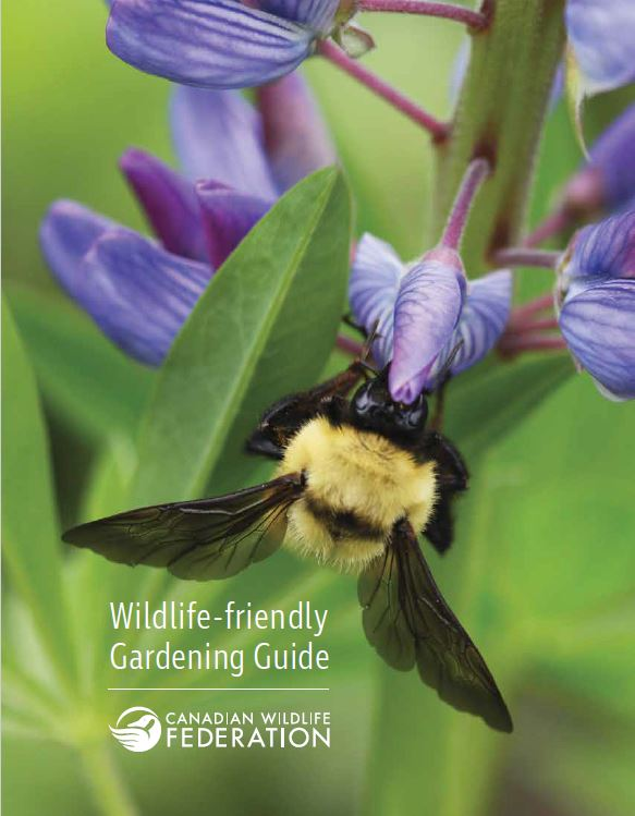 Creating a Wildlife-friendly Gardening Guide Cover