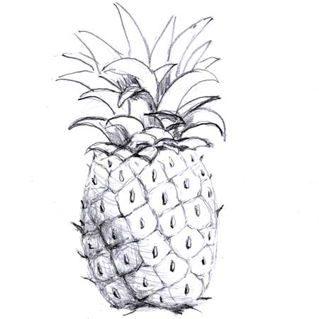 multiplefruit.jpg