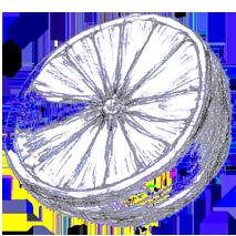 hesperidium