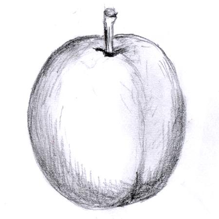 simplefruit.jpg thumbnail