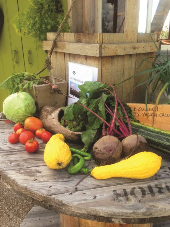Bounty of fresh produce from Bruce Botanical Food Gardens