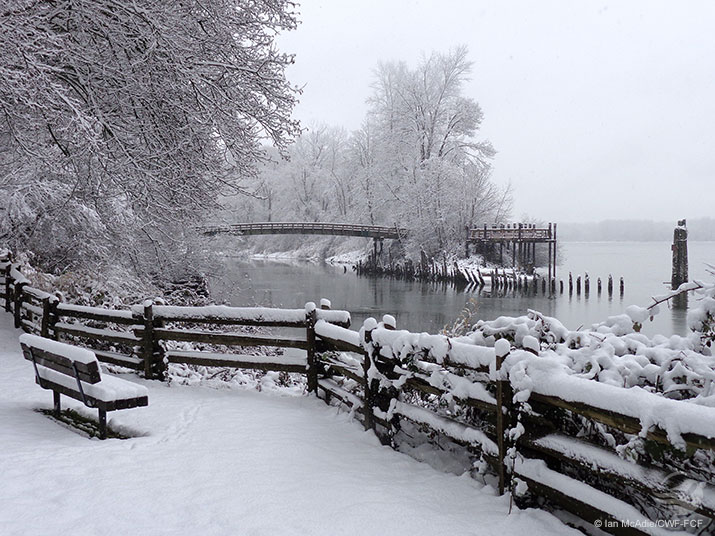 Snow covered bench along side a river