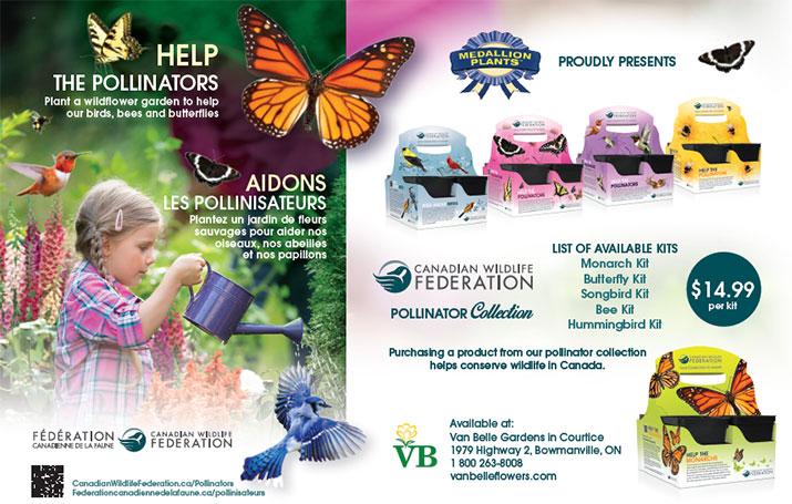 Pollinator flower kits