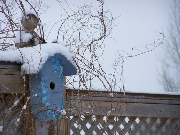 Backyard in winter with snow covered bird house
