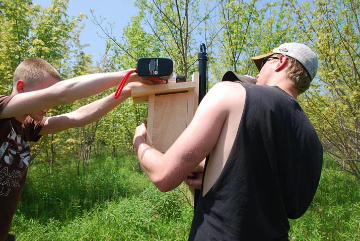 Two guys installing a bat box