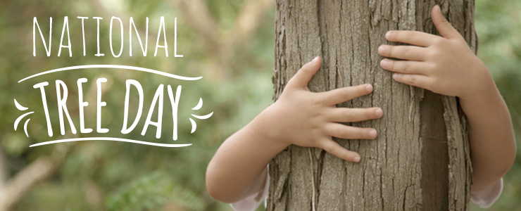 National Tree Day banner