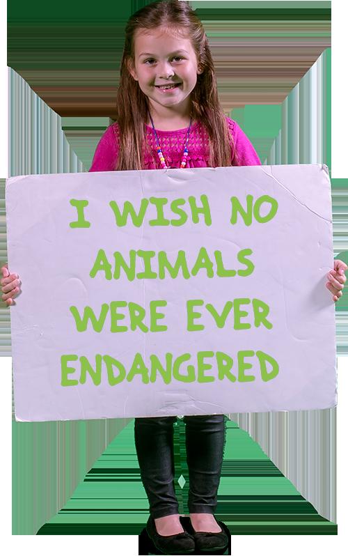 endangered wish