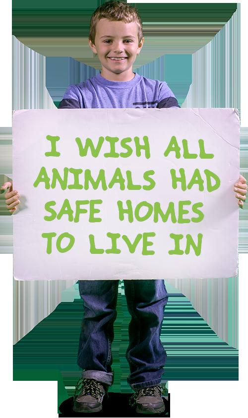 homes wish