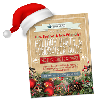 Holiday Party and Fundraiser Guide Cover