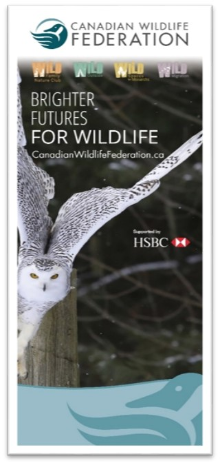 HSBC WILD Programs Tall Banner