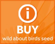 Buy wild bird seed icon