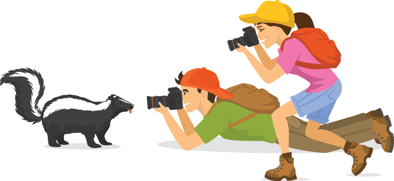 Illustration of people taking a photo of a skunk