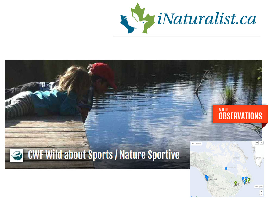 iNaturalist welcome image