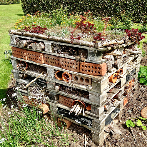 insect hotel garden