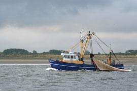 Fishing trawler boat on the water