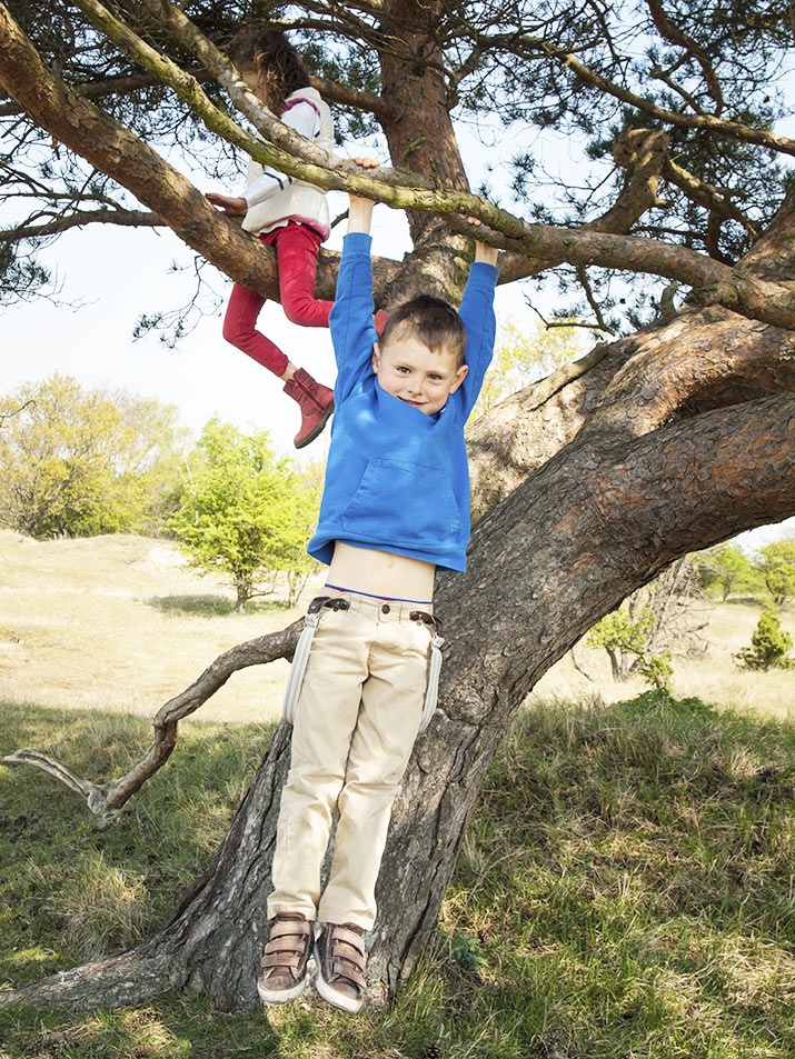 Kids playing in a tree