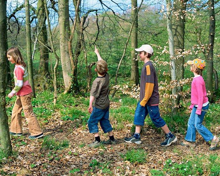 Kids walking in the wood