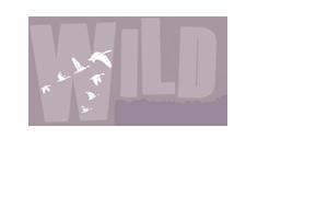 WILD Migration logo