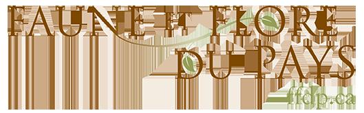 ffdp hww fr logo