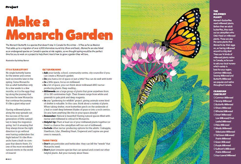 monarch garden pdf image