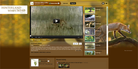 Screenshot of YouTube video channel